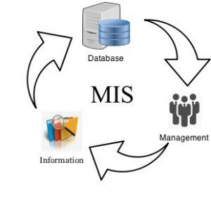 سیستم مدیریت اطلاعات بازاریابی 300x289 سیستم مدیریت اطلاعات بازاریابی