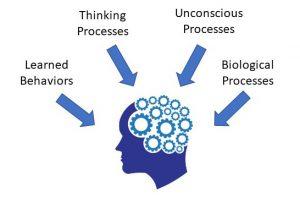 psychology approaches2 1 300x198 psychology approaches2 (1)